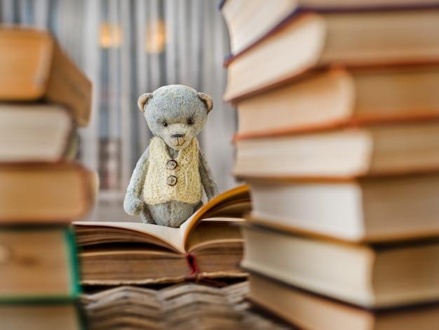 Teddybär teddy-lesebuch in der bibliothek Premium Fotos