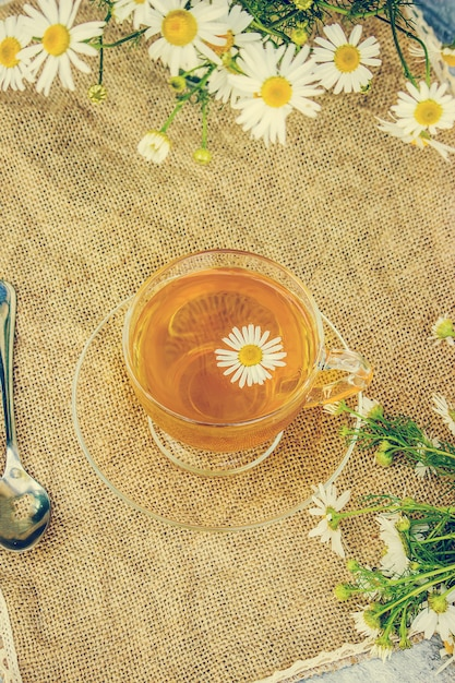 Tee mit kamille. selektiver fokus essen und trinken. Premium Fotos