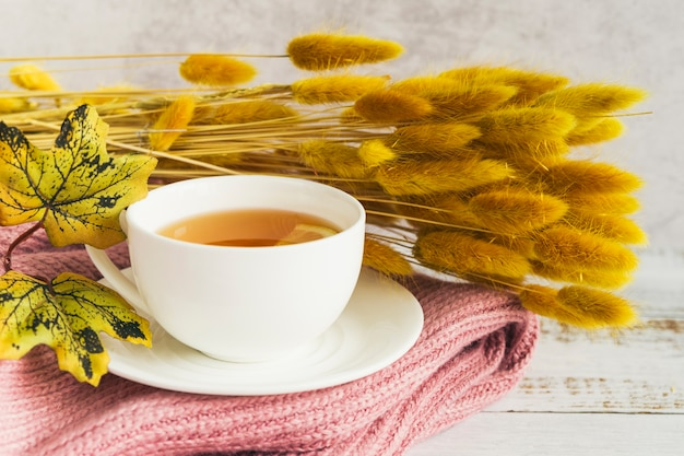 Teesatz mit getränk nahe herbstniederlassungen Kostenlose Fotos
