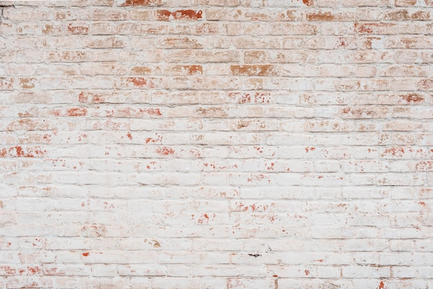 Textur. backstein. es kann als hintergrund verwendet werden Premium Fotos