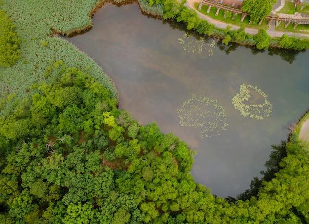 Top luftbild panorama einen schönen ruhigen see in der landschaft des waldes im herbst aus der höhe Premium Fotos
