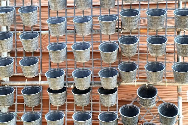 Topfpflanze mit blumen Premium Fotos