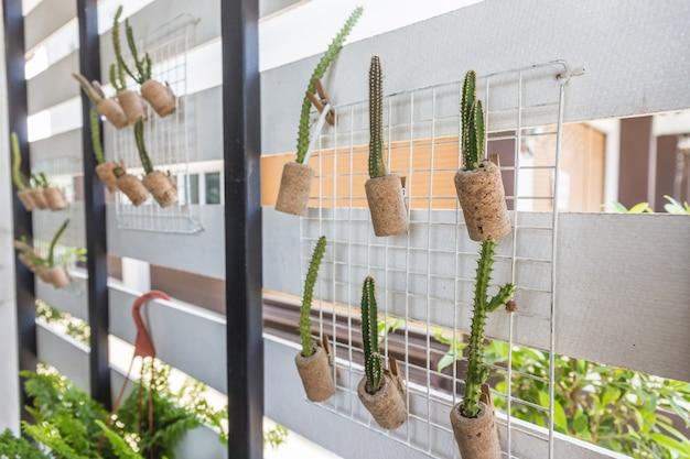 Topfpflanzenkaktus hängen an der wand Premium Fotos