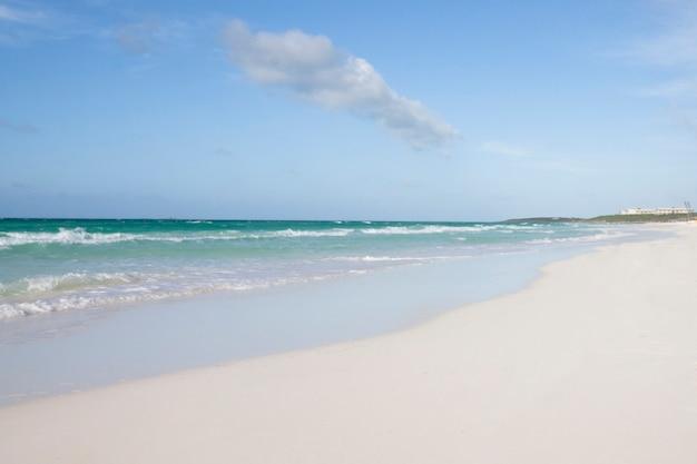 Totale des tropischen sandstrandes Kostenlose Fotos
