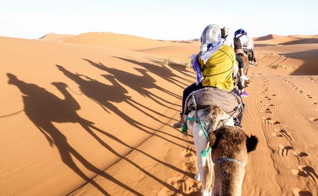 Touristenwohnwagen, der dromedare durch sanddünen in sahara-wüste nahe merzuga in marokko reitet Premium Fotos