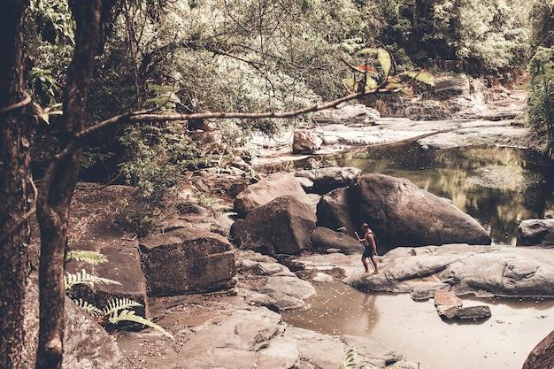 Touristische spaziergänge durch den wald Kostenlose Fotos