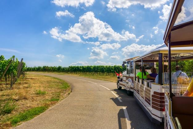 Touristischer exkursionszug in den champagnerweinbergen bei montagne de reims auf landschaftsdorf Premium Fotos