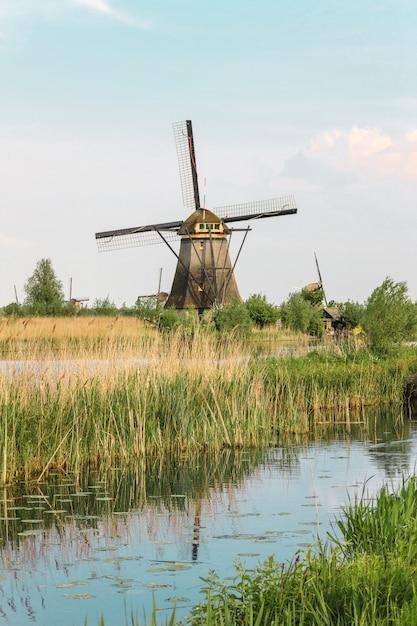 Traditionelle holländische windmühlen mit grünem gras im vordergrund, niederlande Kostenlose Fotos