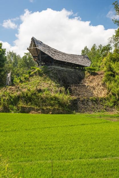 Traditionelles toraja-dorf in idyllischer ländlicher landschaft Premium Fotos
