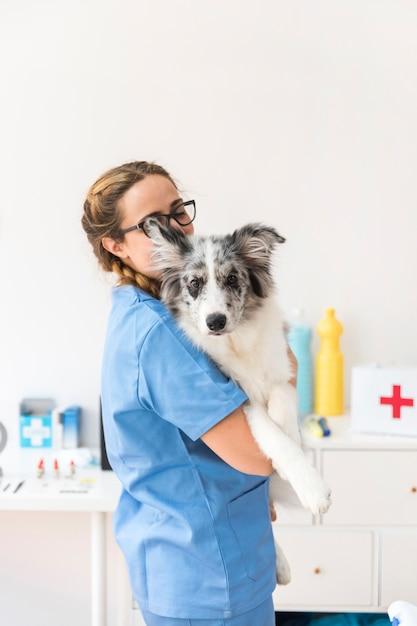 Tragender hund des jungen weiblichen tierarztes in der klinik Kostenlose Fotos