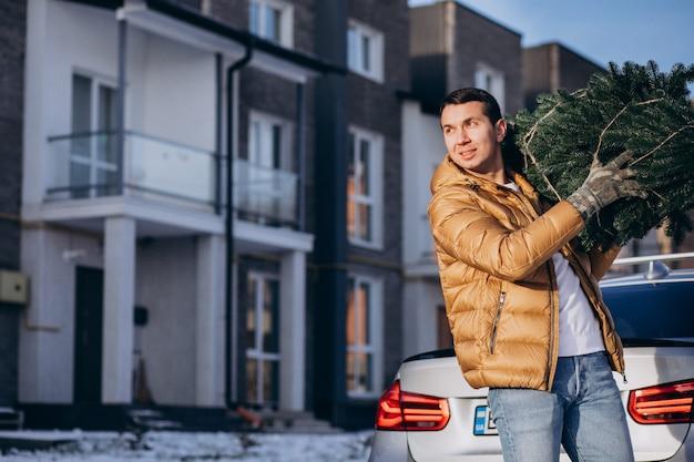 Tragender weihnachtsbaum des vaters nach hause Kostenlose Fotos