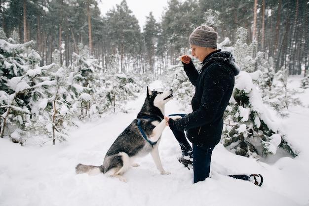 Trainingshund. mann, zum des heiseren hundes im wald des verschneiten winters am kalten wintertag auszubilden Kostenlose Fotos