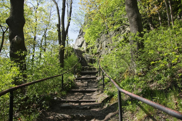 Treppe zu den ruinen der burg andelska hora Premium Fotos