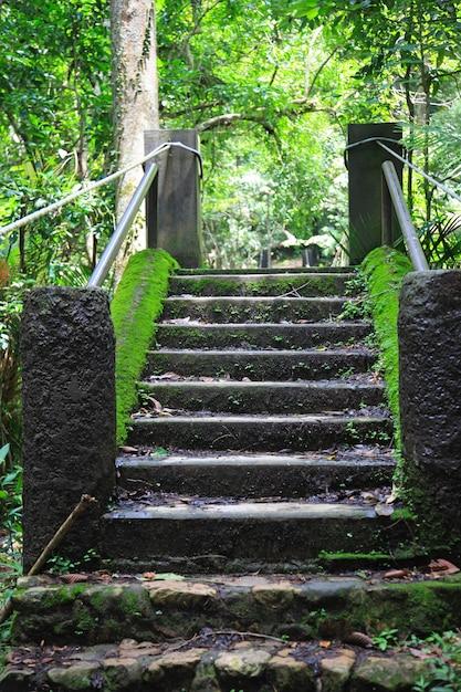 Treppe Kostenlose Fotos