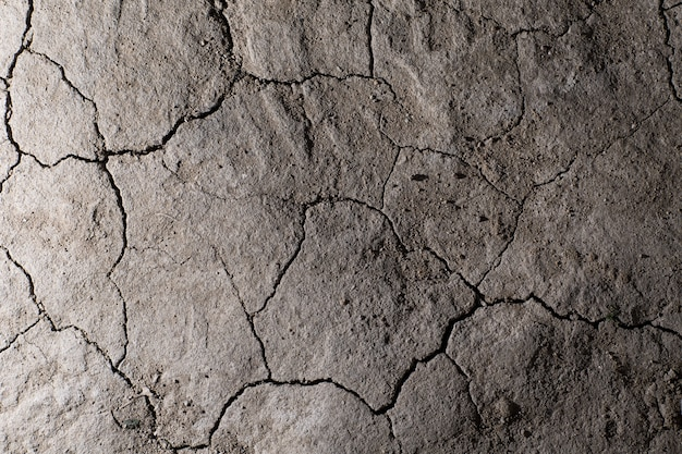 Trockene rissige erdgrundtextur. keine wässernde wüste. Premium Fotos
