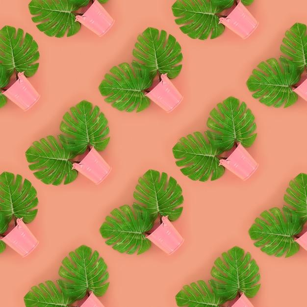 Tropische palmmonsterablätter liegen in pastelleimern Premium Fotos
