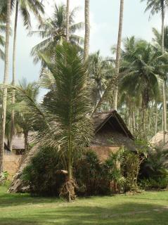 Tropischen strand hütte Kostenlose Fotos