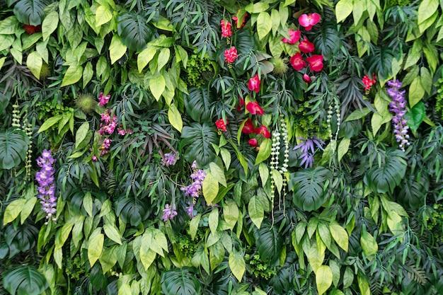 Tropischer blätter- und blumenhintergrund. naturhintergrund des vertikalen gartens mit tropischem grünem blatt Premium Fotos