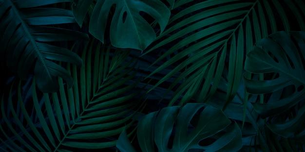 Tropischer blätterhintergrund mit kopienraum Premium Fotos