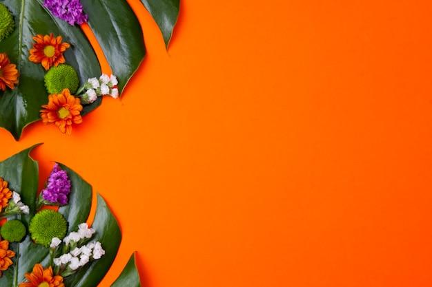 Tropischer orange hintergrund Kostenlose Fotos