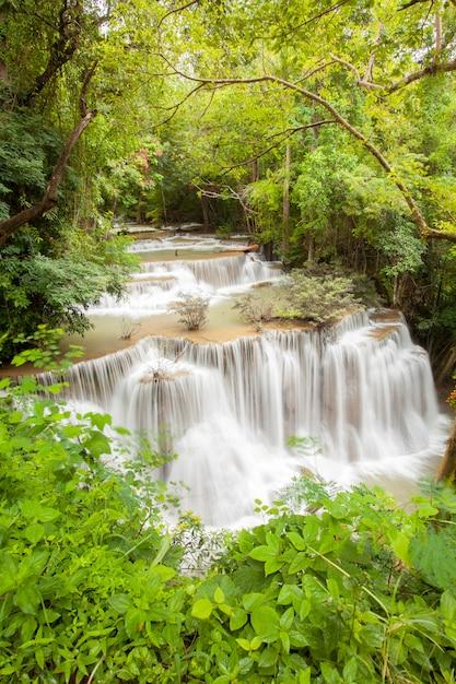 Tropischer regenwaldwasserfall Premium Fotos