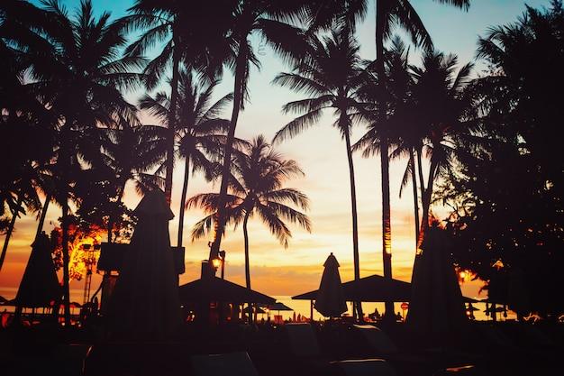Tropischer strand mit palmen und regenschirmen Premium Fotos