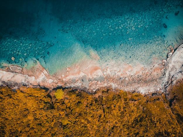 Tropischer strand und meer der schönen natur Kostenlose Fotos