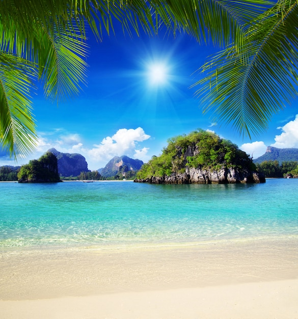 Tropisches meer an einem sonnigen tag Premium Fotos