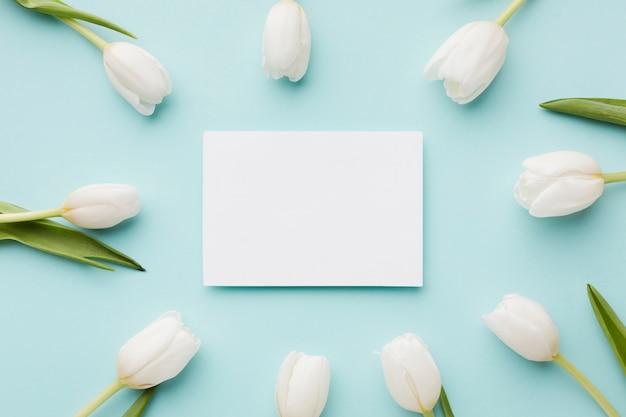 Tulpe blüht mit blattanordnung und leerer weißer karte Kostenlose Fotos