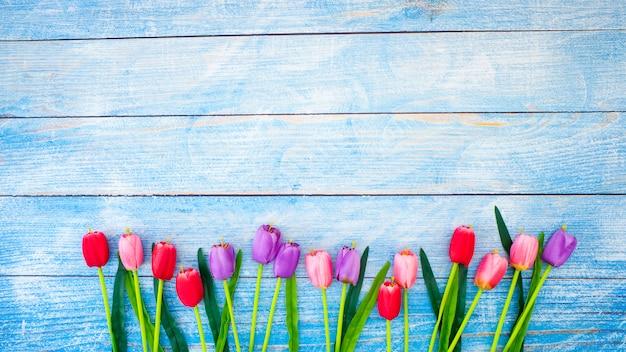 Tulpen auf purplehearthintergrund Premium Fotos