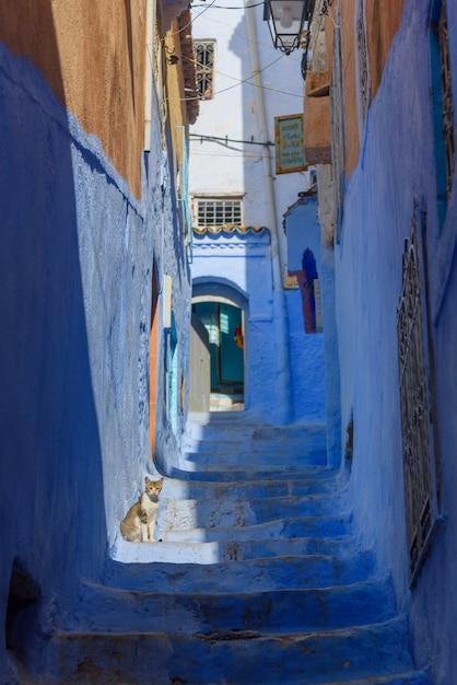 Typische schöne marokkanische architektur in blauer stadt medina chefchaouen in marokko Premium Fotos