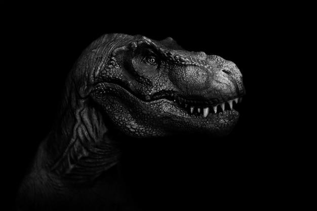 Tyrannosaurus rex nah oben auf dunklem hintergrund. Premium Fotos