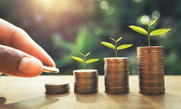 Übergeben sie das setzen von münzen auf stapel mit der anlage, die auf geld wächst. finanz- und rechnungswesenkonzept Premium Fotos