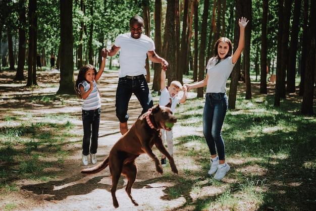 Überglückliche familie springt in park spielerisches labrador. Premium Fotos