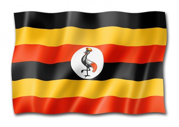 Uganda flagge isoliert Premium Fotos