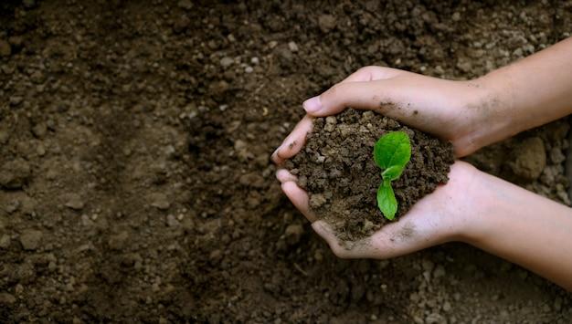 Umwelt earth day-konzept Premium Fotos