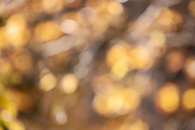 Unscharfe herbstgelbblätter, bokeh lichter Premium Fotos