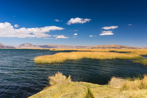 Uros-inseln von totora-schilf, schwimmend auf titicaca-see, peru Premium Fotos