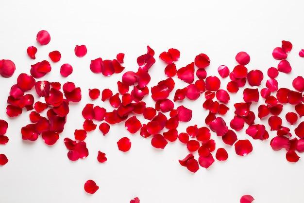 Valentinstag. rosenblütenblätter. valentinstag hintergrund. flache lage, draufsicht. Premium Fotos