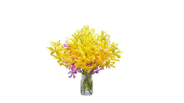 Vase der gelben und purpurroten orchideenblume lokalisiert auf weißem hintergrund mit ausschnittsmaske Premium Fotos