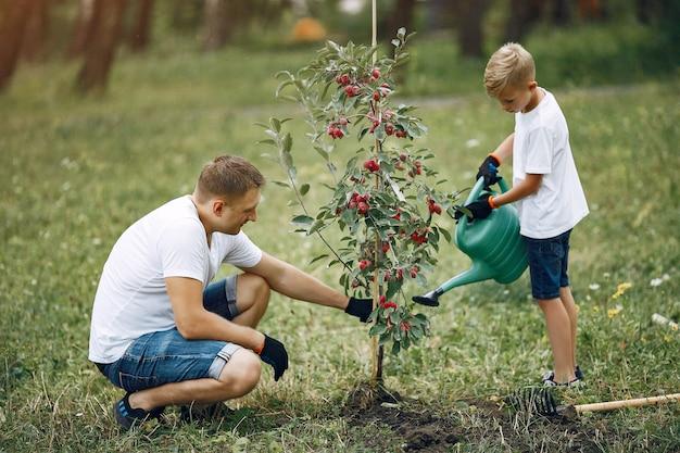 Vater mit kleinem sohn pflanzen einen baum auf einem yard Kostenlose Fotos