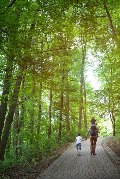 Vater mit seinen söhnen geht in den park. mit der familie durch den wald spazieren. rückansicht vertikaler rahmen Premium Fotos