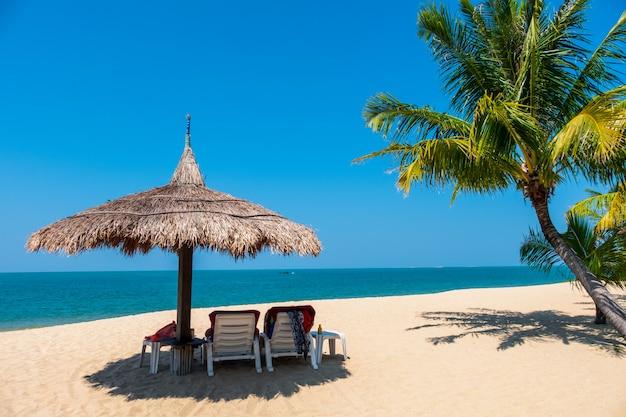 Verbinden sie strandstühle und kokosnusspalme auf tropischem strand mit meer und blauem himmel Premium Fotos