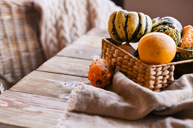 Verschiedene erntedank-mini pumpkins auf einem rustikalen holztisch. Premium Fotos