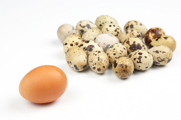 Verschiedene hühnereier auf einem weißen hintergrund Premium Fotos