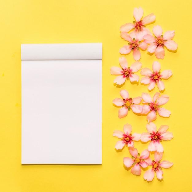 Verspotten sie oben mit frühlingsblumen auf einem gelben hintergrund Kostenlose Fotos