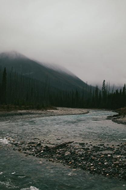 Vertikale aufnahme der steine im fluss unter den mit nebel bedeckten bergen Kostenlose Fotos