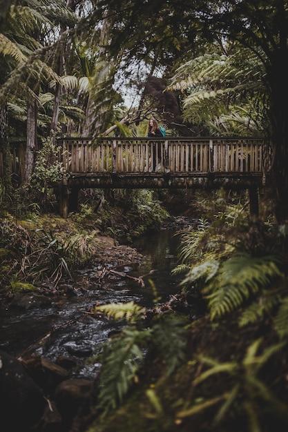 Vertikale aufnahme einer frau auf einer brücke, umgeben von bäumen in kitekite falls, neuseeland Kostenlose Fotos