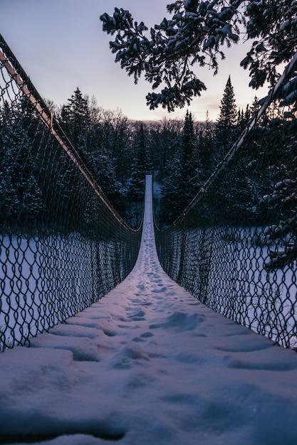 Vertikale aufnahme einer hängebrücke in richtung des schönen tannenwaldes, der mit schnee bedeckt wird Kostenlose Fotos