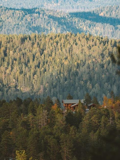 Vertikale aufnahme einer hütte in einem wald, umgeben von vielen grünen bäumen in norwegen Kostenlose Fotos